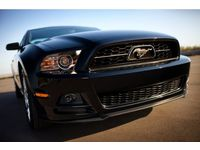 Ford Grille - Pony With Chrome Bezel - DR3Z-8200-AD