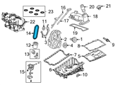 Ford Timing Chain - F77Z-6268-AB and Related Parts